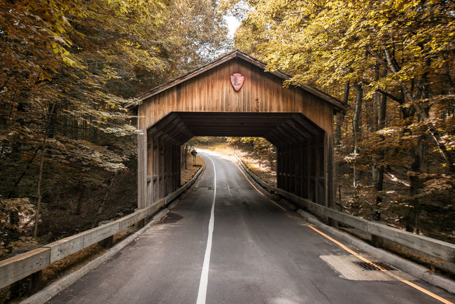 Covered Bridge Michigan Pierce Stocking Scenic Route Sleeping Bear Dunes Sleeping Bear Dunes National Lakeshore Nature Foliage Colour Of Life Color Palette Trees Road Road Trip No People Tranquil Scene Tranquility Beauty In Nature Landscape