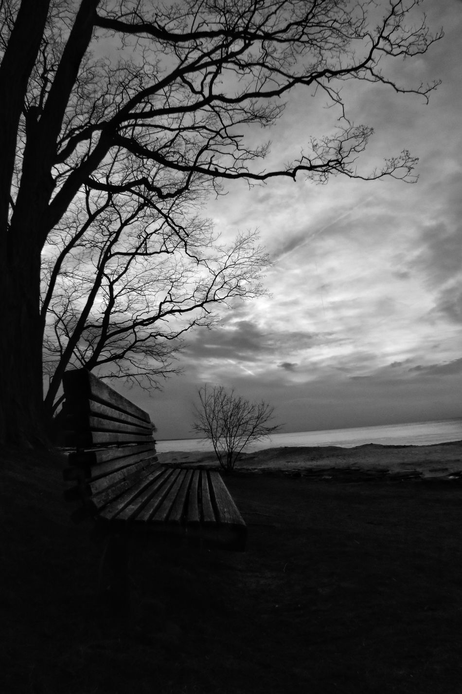 A Monochrome Monday and Treegasmic Tuesday all rolled into one ... what the heck, lets throw in a Not Park Bench Thursday ... Tree Nature Sky Tranquility Tranquil Scene Beauty In Nature Outdoors Silhouette No People Scenics Bare Tree Landscape Cloud - Sky Branch Day Bw_collection Fortheloveofblackandwhite Blackandwhite