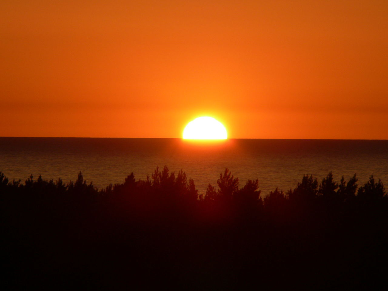 Baltic sea sunset Beauty In Nature Clear Sky Horizon Over Water Idyllic Nature Orange Color Romantic Sky Scenics Sea Silhouette Sky Sun Sunset Tranquil Scene Tranquility Water
