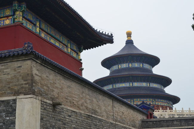Ancient Architectural Column Architectural Feature Architecture Beijing, China Built Structure Capital Cities  Culture Day Exterior Famous Place High Section Historic History Low Angle View No People Outdoors Sky Temple Temple - Building Temple Of Heaven Park The Past Tourism Travel Destinations