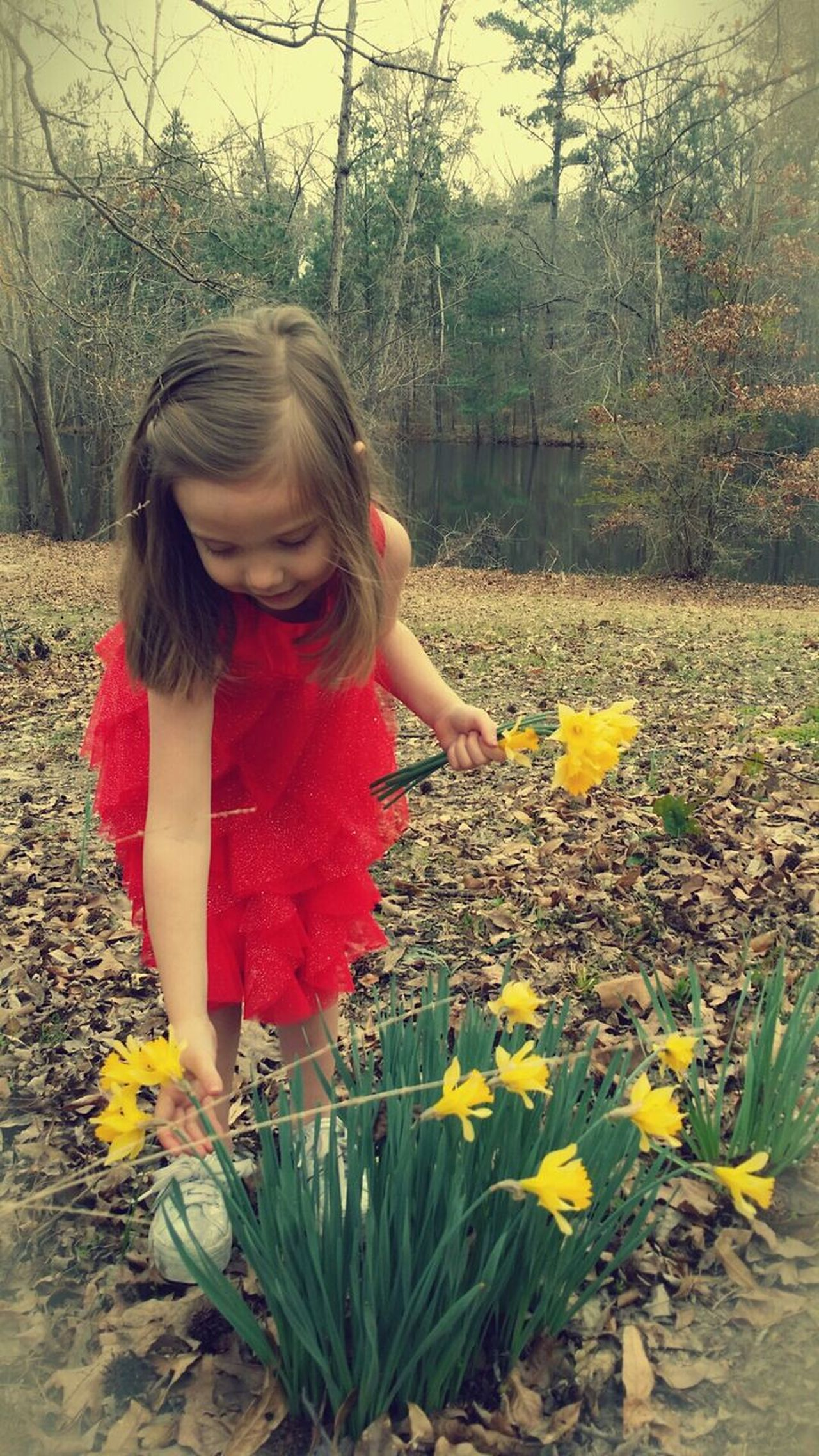 Red Dress Girl Picking Flowers  Pretty Happy Yellow Flowers Beauty Life In Motion