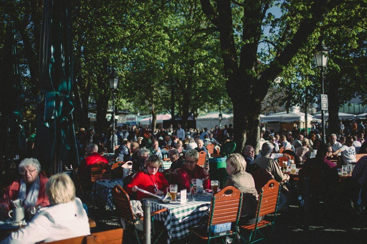 Beautiful stock photos of bier, large group of people, women, tree, sitting