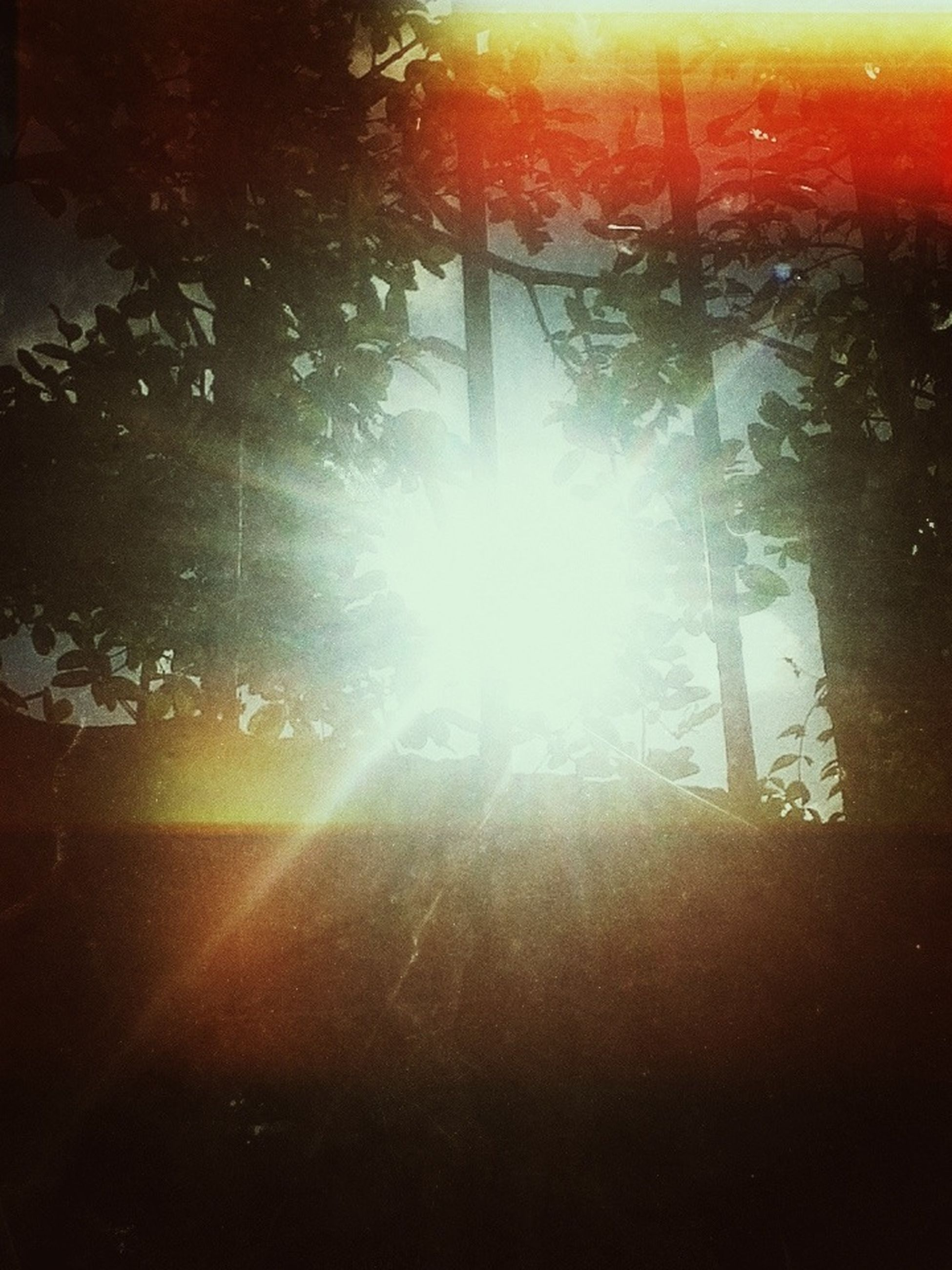 sun, sunbeam, lens flare, sunlight, tree, sunset, bright, tranquility, nature, back lit, silhouette, orange color, no people, beauty in nature, season, sunny, outdoors, streaming, built structure, falling