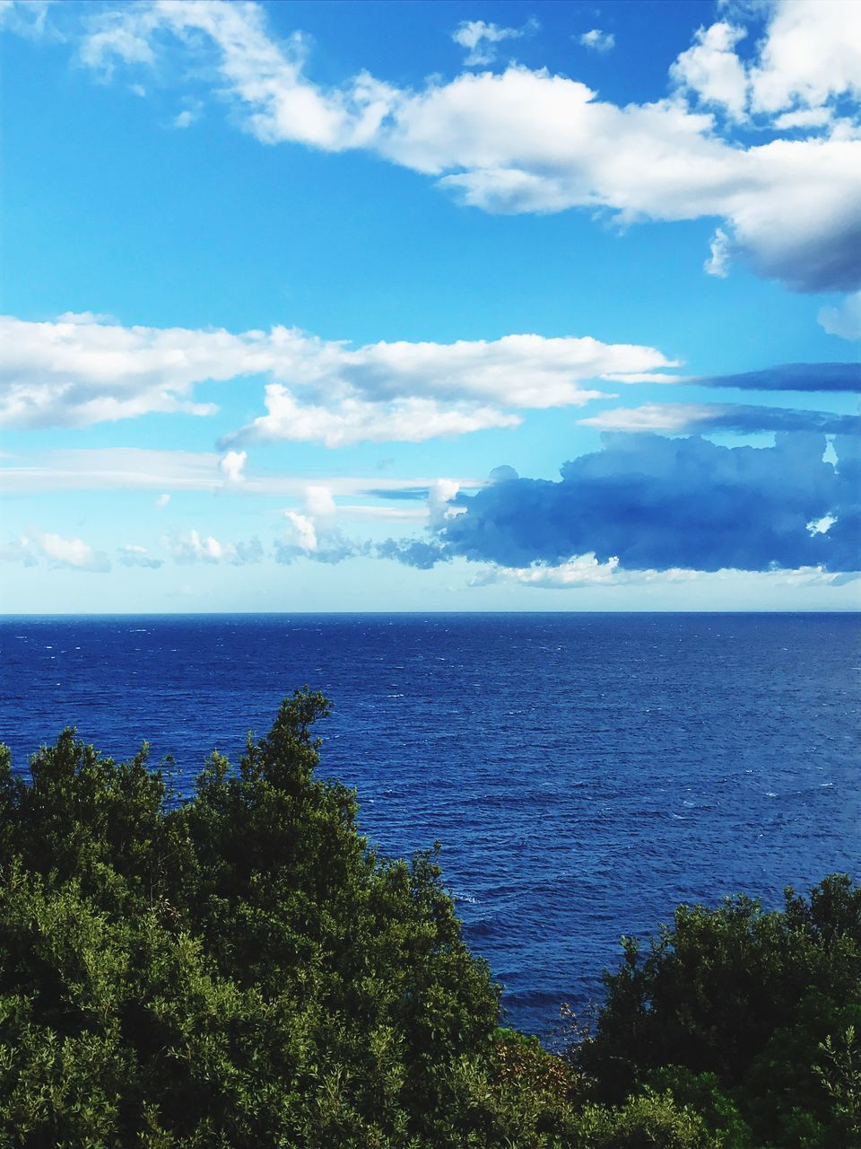 sea, sky, scenics, horizon over water, water, nature, beauty in nature, tranquil scene, tranquility, cloud - sky, day, blue, outdoors, tree, no people, growth
