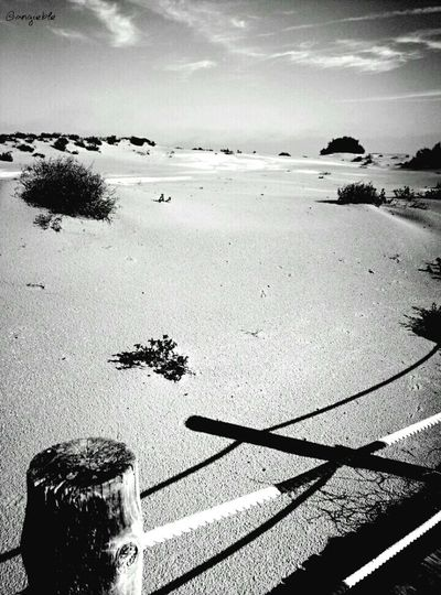 Shades Delta De L'Ebre Blackandwhitephotography Black And White Photography Desembocadura Blackandwhite Blackandwhite Photography Black&white Catalunya Catalonia Riumar Blackandwhitenature Black & White Sand Dunes Bnw_nature B&w Photography Beach