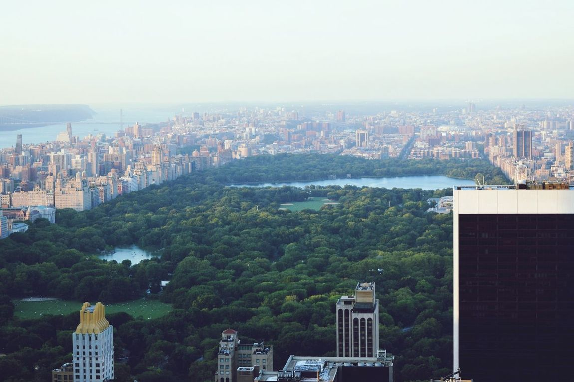 New York NYC Central Park Topoftherock