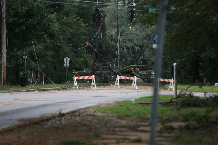 Tallahassee, Florida, USA - September 2016 : Hurricane Hermine Aftermath Aftermath Costly Damaged Disaster Fallen Trees Fixing Florida Hermine Hurricane Hurricane Damage Hurricane Hermine Hurricane Season  Hurt Recovery Roof Damage Scary Snapped Storm Storm Damage Stormy Weather Tallahassee Trees Uprooted We Will Rebuild Weather