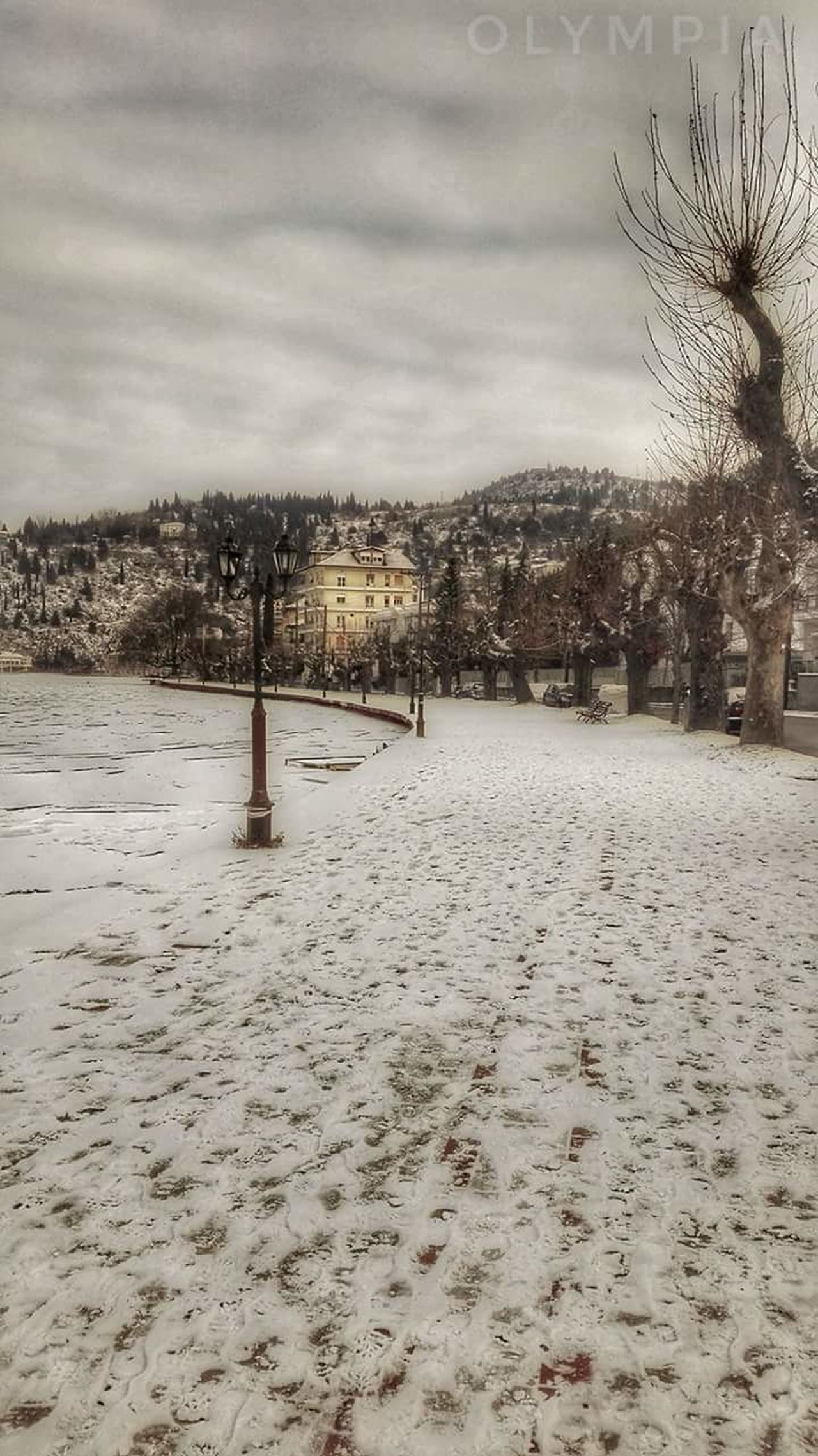 Winter2017 west macedonia kastoriagreece Winter Snow Tree No People Cold Temperature Cloud - Sky Outdoors Nature Sky Beauty In Nature Day Hello World Travel Photography GREECE ♥♥ Nature_collection Landscape_collection EyeEmNatureLover Beauty In Nature Nature Photography Nature_collection Nature Streetphotography City View  Enjoying The View Hellas Travels Travel