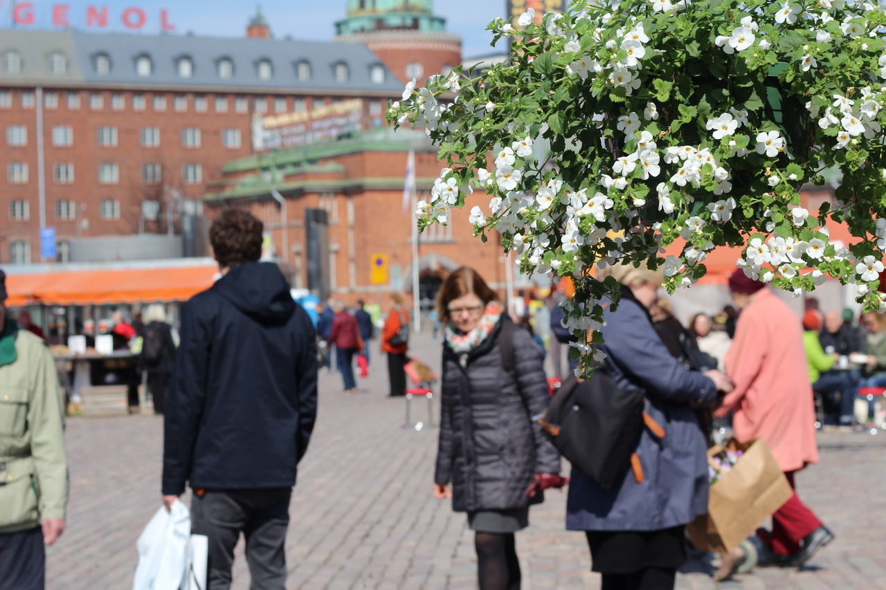 Pictures taken at Hakaniemi Market Hall, no editing, no touching. April 2016 Casual Clothing City City Life Day Enjoyment FIN Finnish Spring Flower Flower Shop Focus On Foreground Fun Hakaniemen Kauppahalli Hakaniemi Hakaniemi Market Hall Hakaniemi Tori Helsinki Showing Imperfection Lifestyles Outdoors Upclose Street Photography Spring Flowers