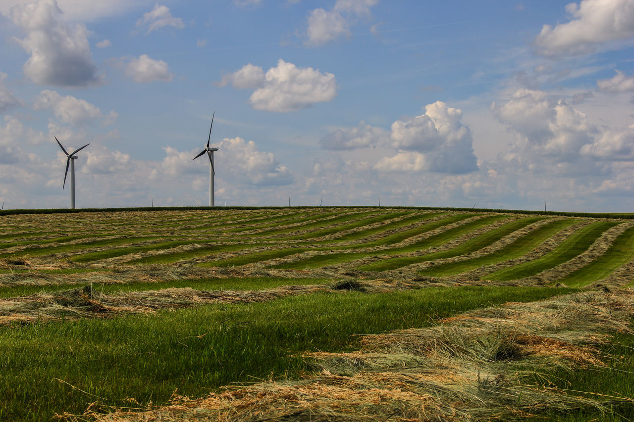 Hay Field Agriculture Alternative Energy Canon60d Canonphotography Clouds Farm Field Grass Green Hay Hilly Landscape Renewable Energy Rolling Hill Rural Scene Sky Summer Wind Farm Wind Power Wind Turbine Windmill