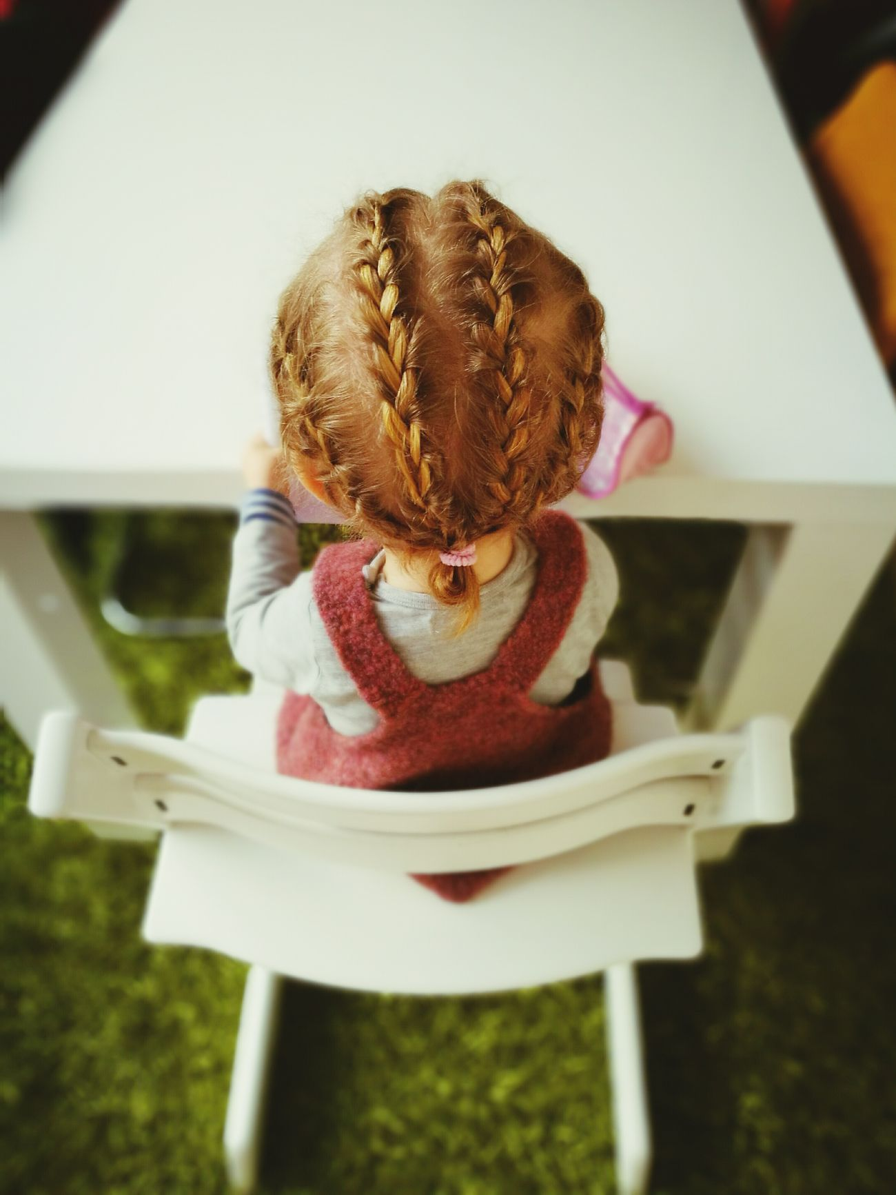Girl Braided Hair Toddler