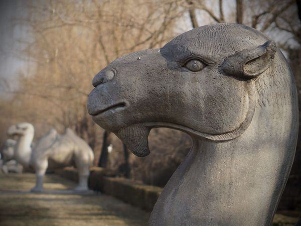 Ming Tombs Animal Representation Animal Themes Art And Craft Camel Close-up Day Focus On Foreground No People Outdoors Sculpture Statue