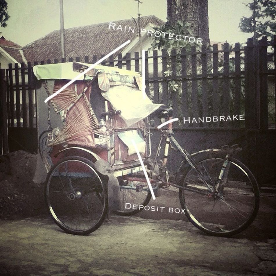 Anatomy Of Becak