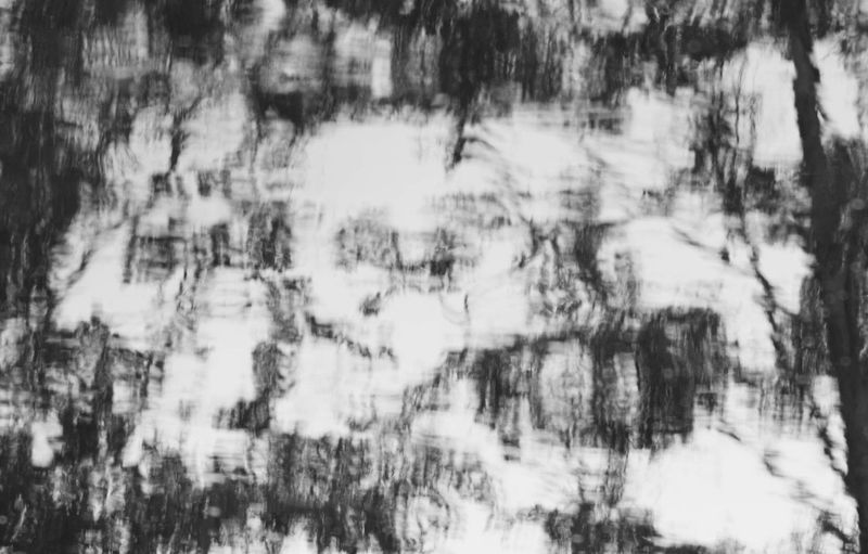 Abstract Beauty In Nature Black And White Blackandwhite Horror Looking At Me Monster Monsters Scary