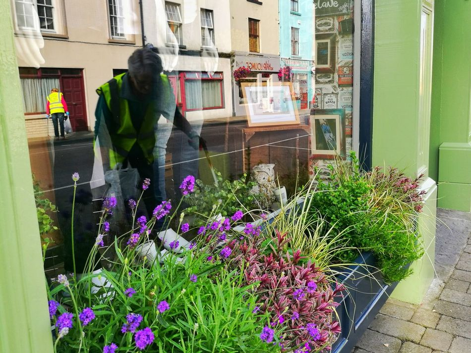 Flower Adult People Working Adults Only Plant Reflection Volunteering Tidy Towns Litter Picking Community Litterfree Kerry Ireland Tranquil Scene HuaweiP9Photography Ireland Wild Atlantic Way Community Spirit