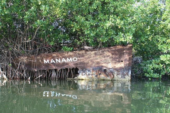 Manamo Mangrove Mangrove Forest Margarita, Venezuela Old Boat Plant Water Waterfront La Restinga Parque Nacional De La Restinga Transportation Venezuela
