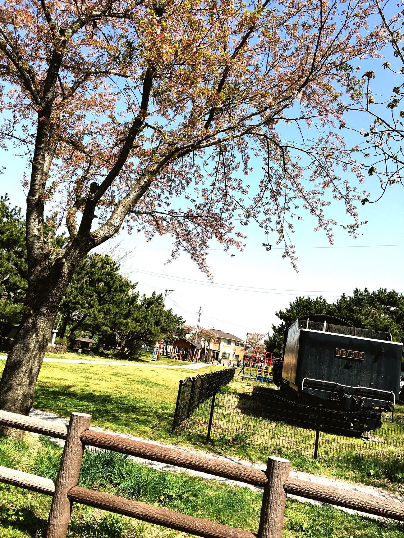 Akita SL公園