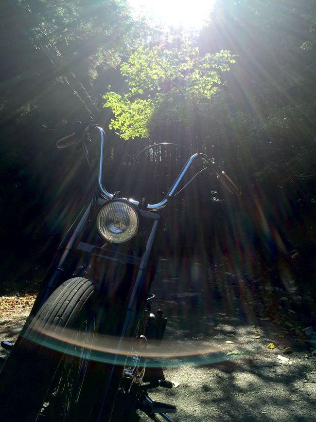 Motorcycles Green Sun Nature Hello World Holiday
