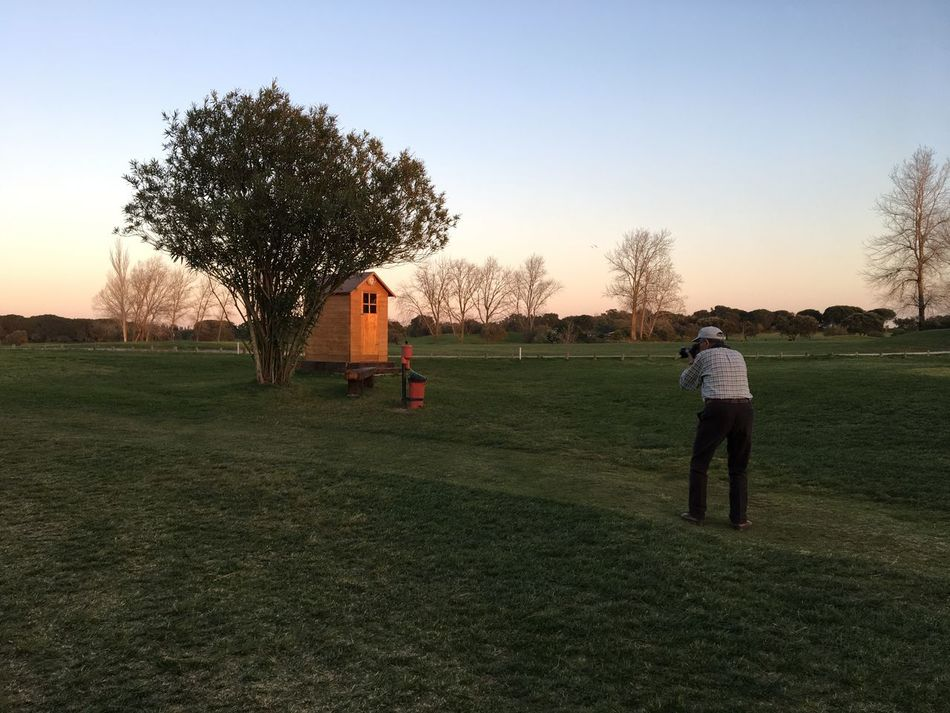 Adult Adults Only Day Golf Golf Course Golfer Grass Men Only Men Outdoors People Photographer Sunset Tree Two People