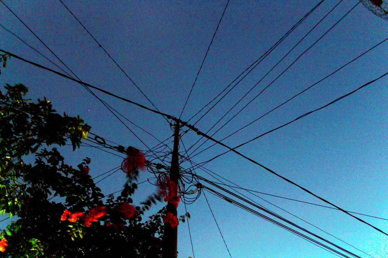 complicated Bluesky Cable Clearsky Complexity Complicated Connection Dailylife Day Flowers Fuelandpowergeneration INDONESIA Kampungbaru Kepulauanriau Ketanjungpinanglah Lowangleview Outdoors Powercable Powersupply Red Silhouette Tanjungpinang Technology Tree Wonderful Wonderfulkepri