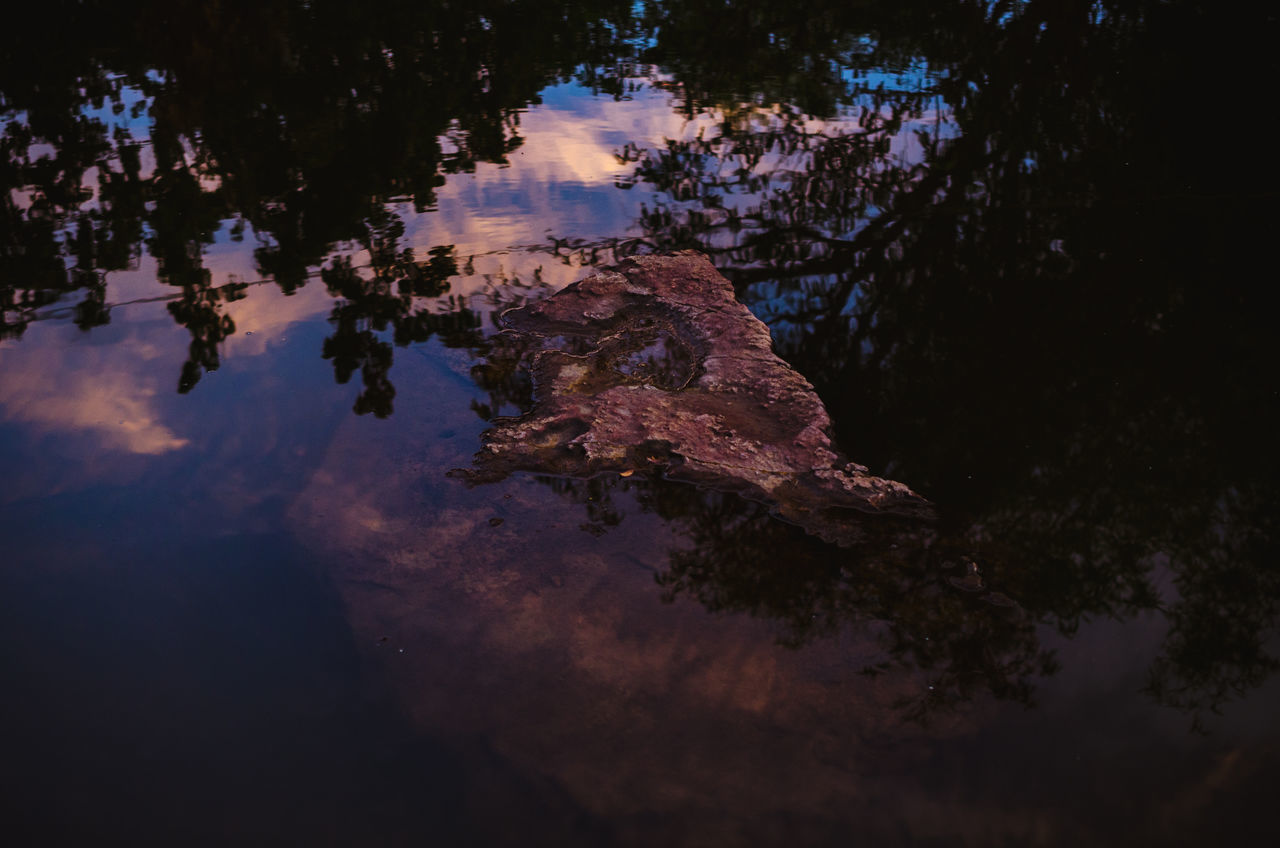nature, reflection, beauty in nature, water, outdoors, no people, tranquility, sky, tree, scenics, day, close-up