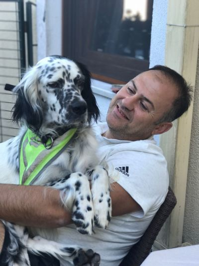 Leo Dog Dog Love English Setter