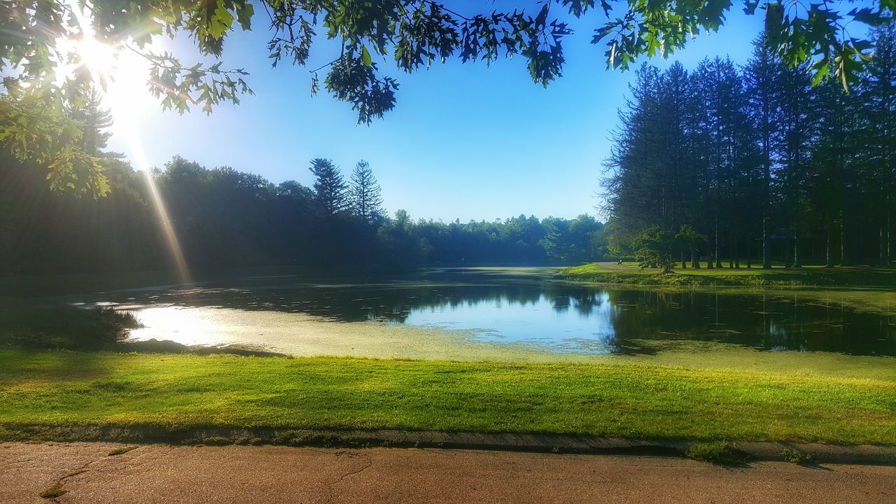 Good morning..... Tree Reflection Water Nature Sky Blue Sunlight Lake No People Outdoors Landscape Sunset Beauty In Nature Day EyeEm Nature Lover EyeEm Tranquil Scene Scenics EyeEm Best Shots EyeEm Best Shots - Landscape Green Color