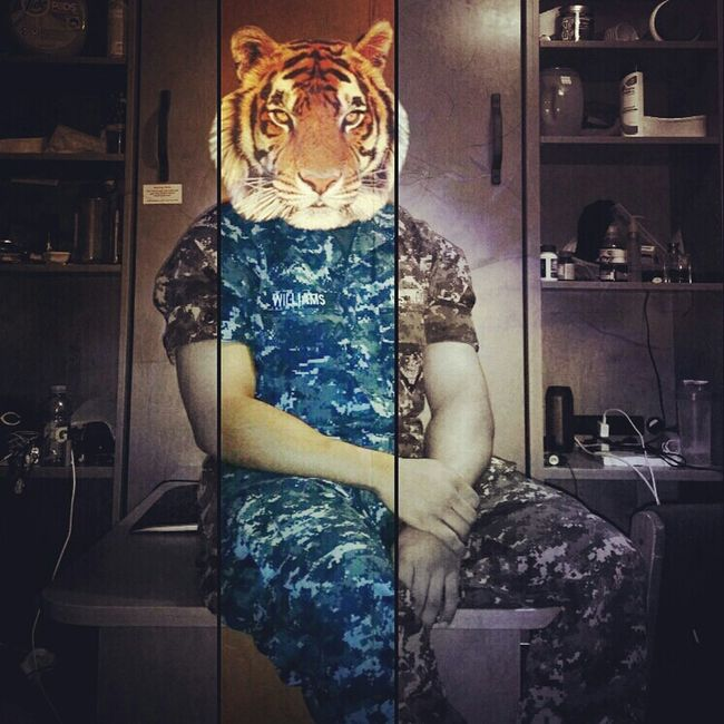 Rawr. Beast in uniform. Tiger Gonavy Navy Beastmode Bulk Camo Meninuniform America