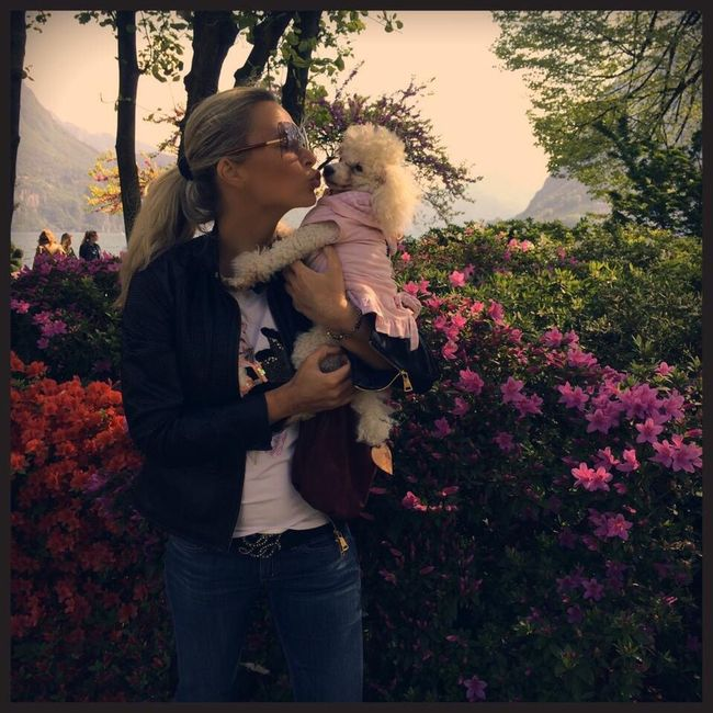 Lugano Lugano, Switzerland Park Love Dog Poodle Poodletoy Kiss Unconditional Love Hug Outdoors River Nature Tranquility Water Lake Flowers Colors Colors Of Life Lifestyles