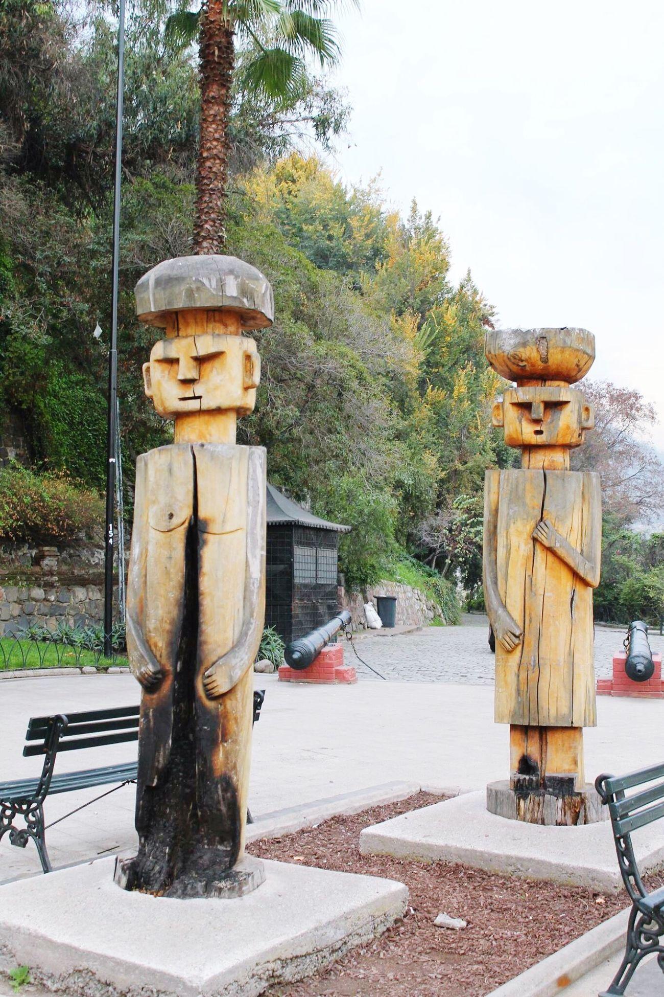 Sculpture Cerrosantalucia Cerro Santa Lucia Arte Tronco Escultura Atardecer