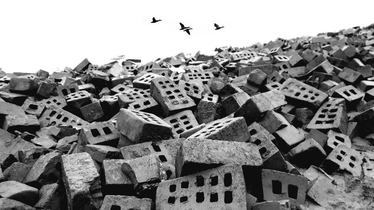 Hollands Landschap Betonporn Beton