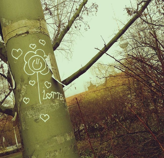 Flo Wer Love Relaxing Enjoying The View Berliner Ansichten Fernsehturm Urban Nature Trees Flowers Hugging A Tree Quality Time Hanging Out Starting A Trip Walking Around Streetphotography Streetart Berlin Mitte Art Graffiti Love Is In The Air Lovely City