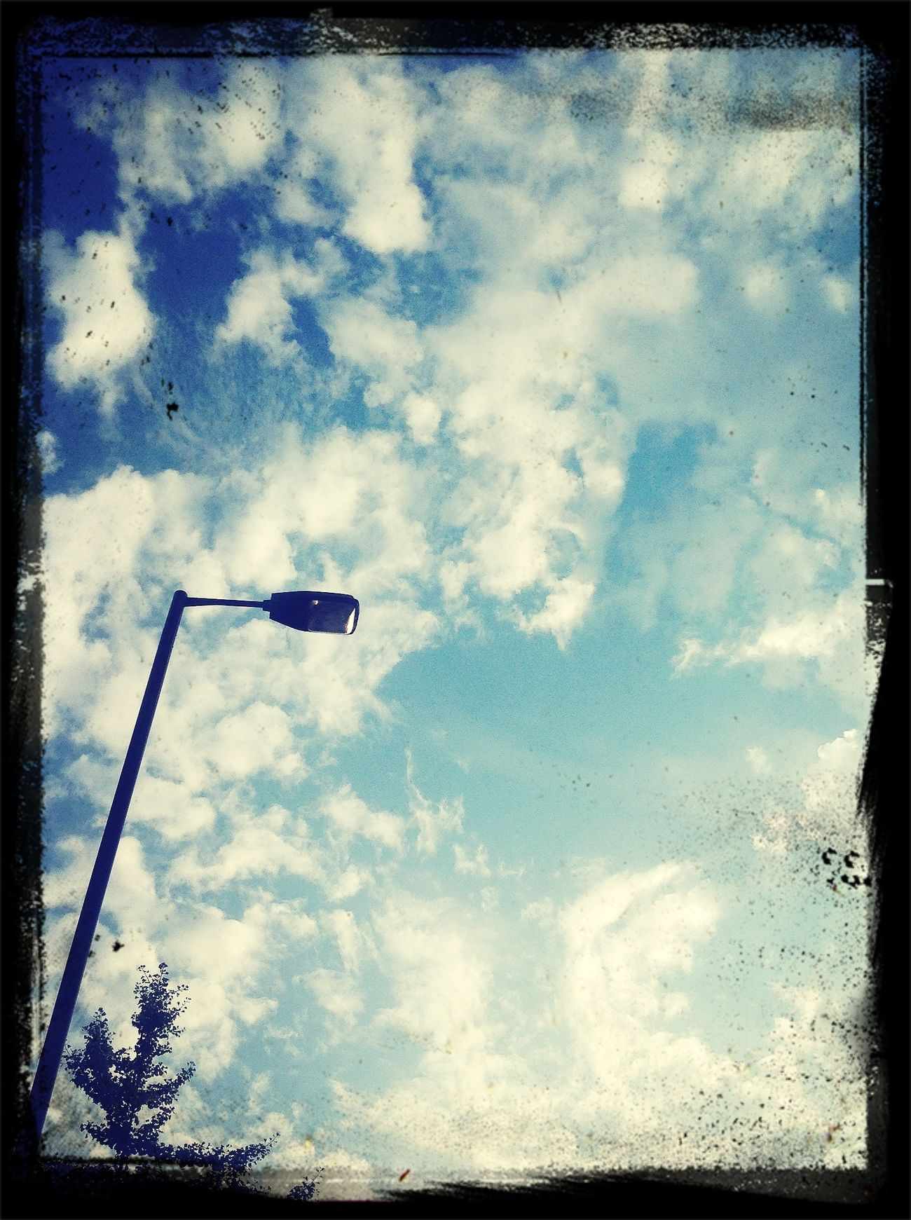 sky:lamp:tree
