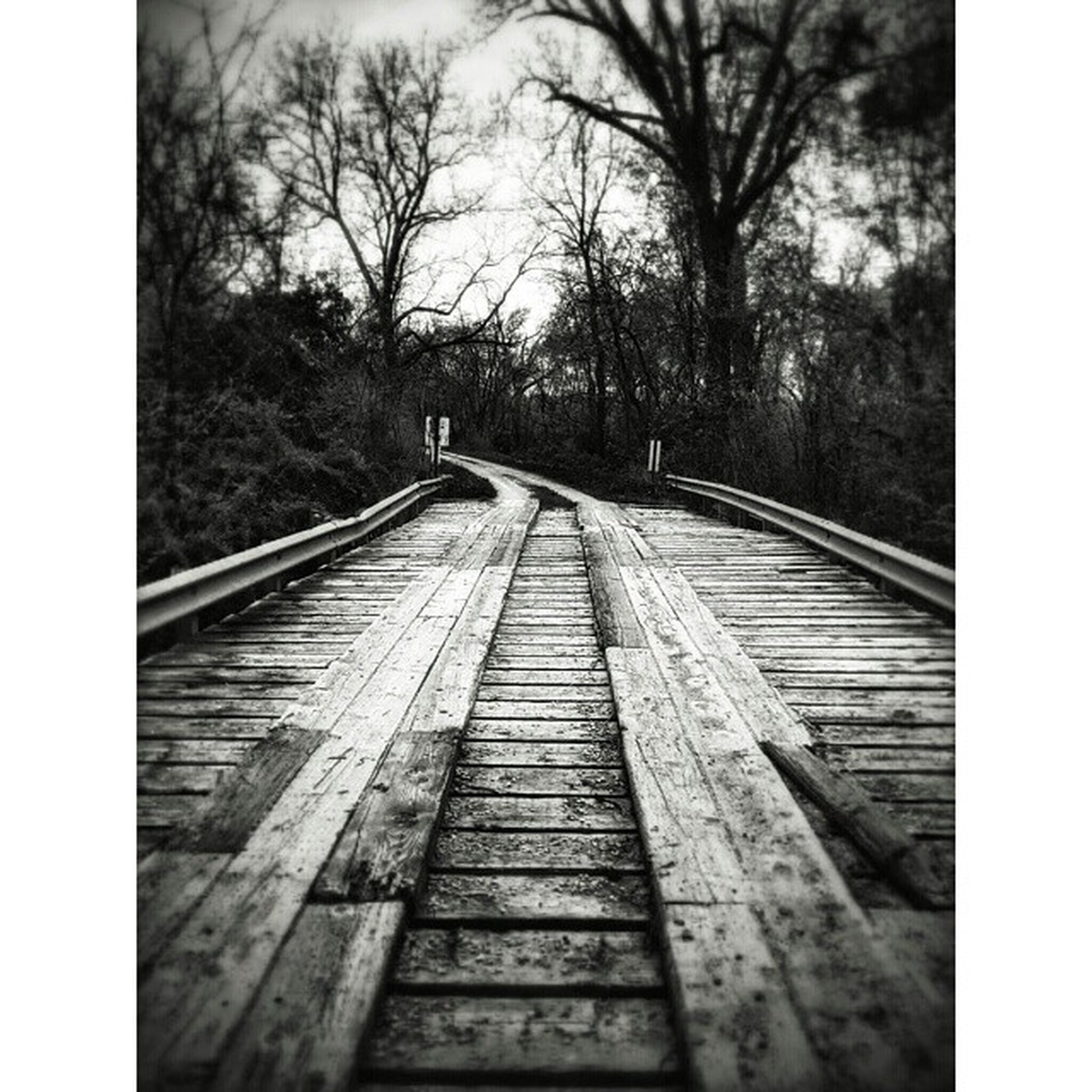 the way forward, transfer print, tree, auto post production filter, diminishing perspective, vanishing point, railroad track, transportation, railing, bare tree, footbridge, sky, wood - material, long, tranquility, day, built structure, outdoors, no people, connection