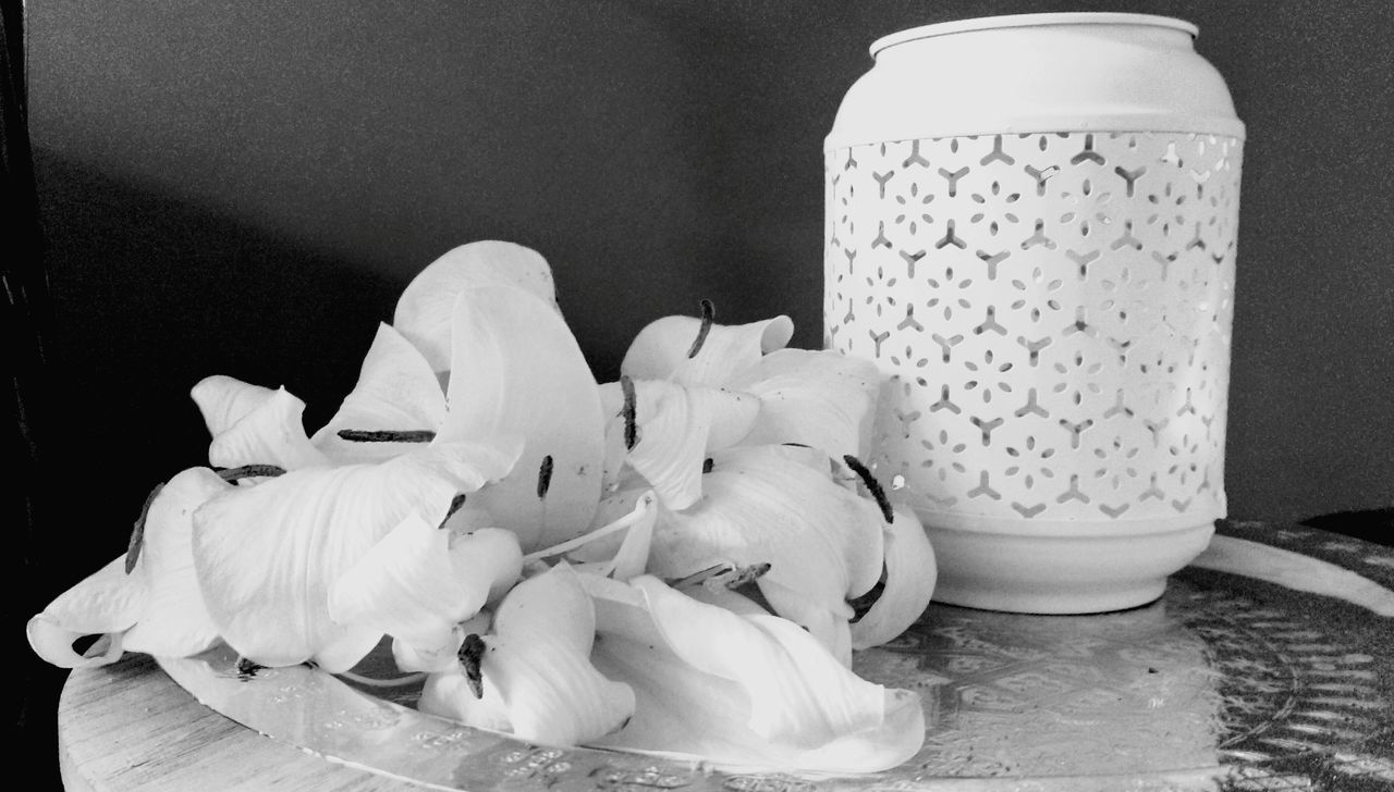 Jar No People Indoors  Close-up Day Urban Lifestyle Flowers_collection Fleur De Lis Nature Noirphotography Flower Beauty In Nature Petal Lilies Fragility Flowers, Nature And Beauty Flower Head Lily Flower White Flower Beauty In Ordinary Things Lily Style Death Nature Deathbed Dying Flowers