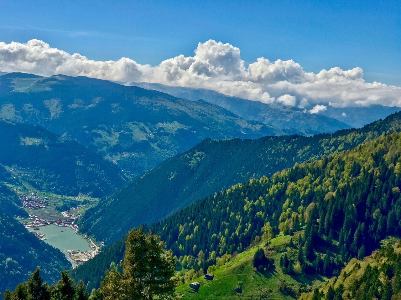 Mountain Scenics Nature Beauty In Nature Sky Landscape Mountain Range Green Color Tranquil Scene Pine Tree Forest No People Day Growth Outdoors Blue Tree Trabzon Uzungol Turkey Women Water Sunlight Tranquility Travel Destinations Lake Cloud - Sky