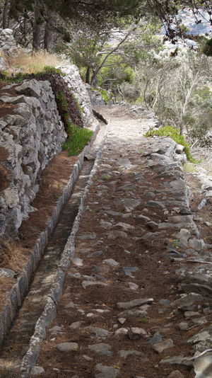 Day Levada Nature No People Outdoors Porto Santo Scenics Viaduct Water Flow