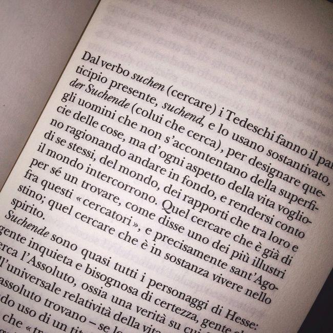 der Suchende. Hermanhesse Goodnight Bestbook Siddartha Libri  Leggerecambia