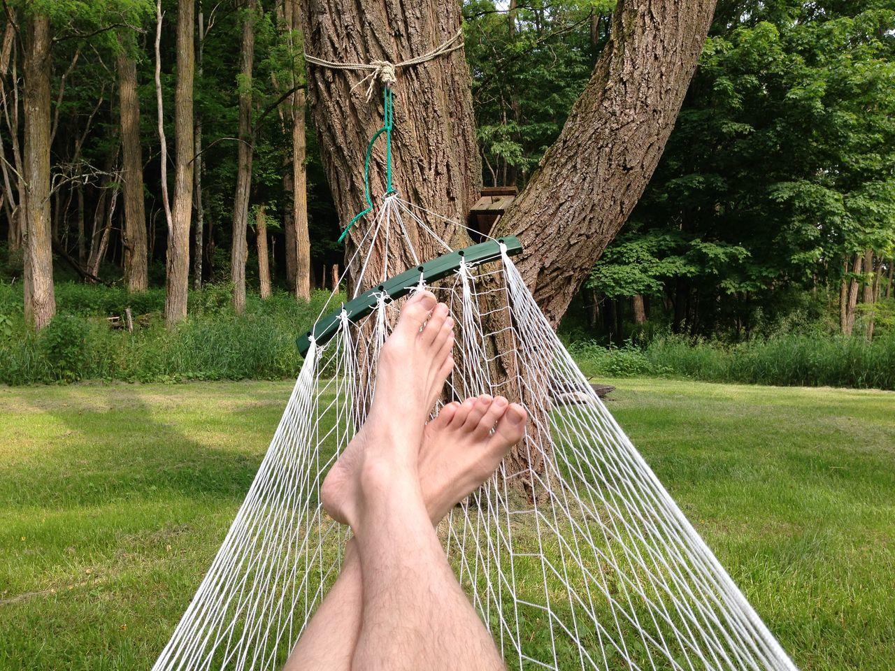 Low Section Of Man Relaxing On Hammock In Grassy Fields