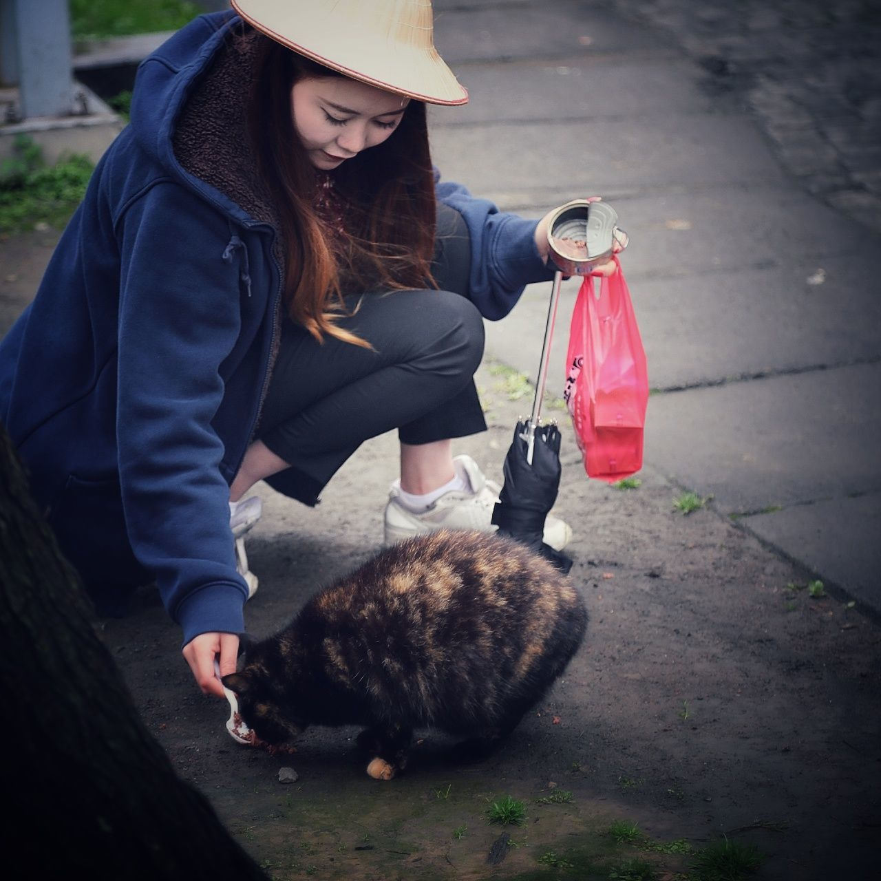 EyeEmNewHere Korean Girl Cat One Woman Only Only Women Animal One Animal One Person Knit Hat Livestock Pets Adults Only People Adult Outdoors Day Urban Exploration Light And Shadows Nature Beautiful Streetphotography EyeEm Best Shots - Nature Urban Landscape Travel Beauty In Nature