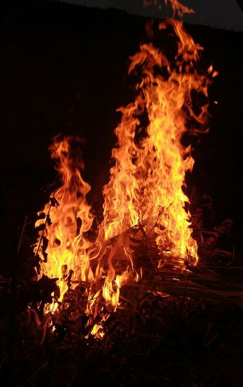Fire Festival Lohri Celebration Indian Indian Culture  Indianstories Flame Burning No People Night Outdoors Close-up