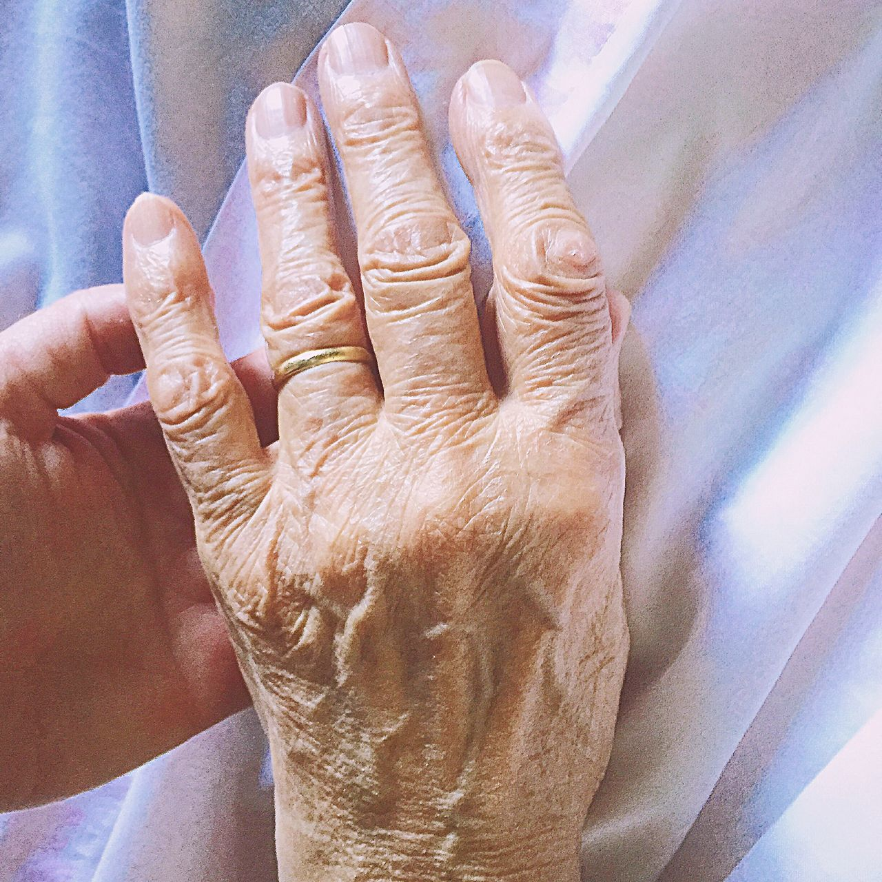 Human Hand Human Body Part Close-up Indoors  Women People One Person Adult Adults Only Only Women Day Wrinkled Skin Wrinkles Wrinkled Wrinkled Hand Aged Aged Hands Old Old Age Old Hands Experience Of Life Fingers Hand Experience Life