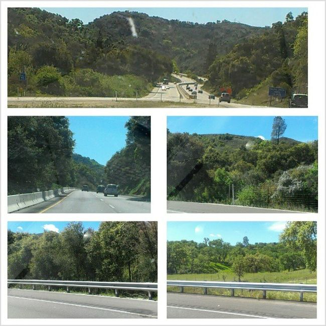 #gorgeous and #green #California. #slo Green Gorgeous California Slo Ca_skies Angelgetaways