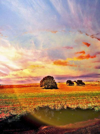 Landscape edit Landscape Edit Nature Sky And Clouds