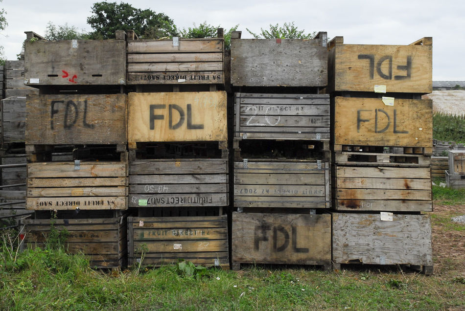 Potato boxes - agriculture Agriculture Commercial Agriculture Farming Growing Food Outdoors Potato Boxes Produce
