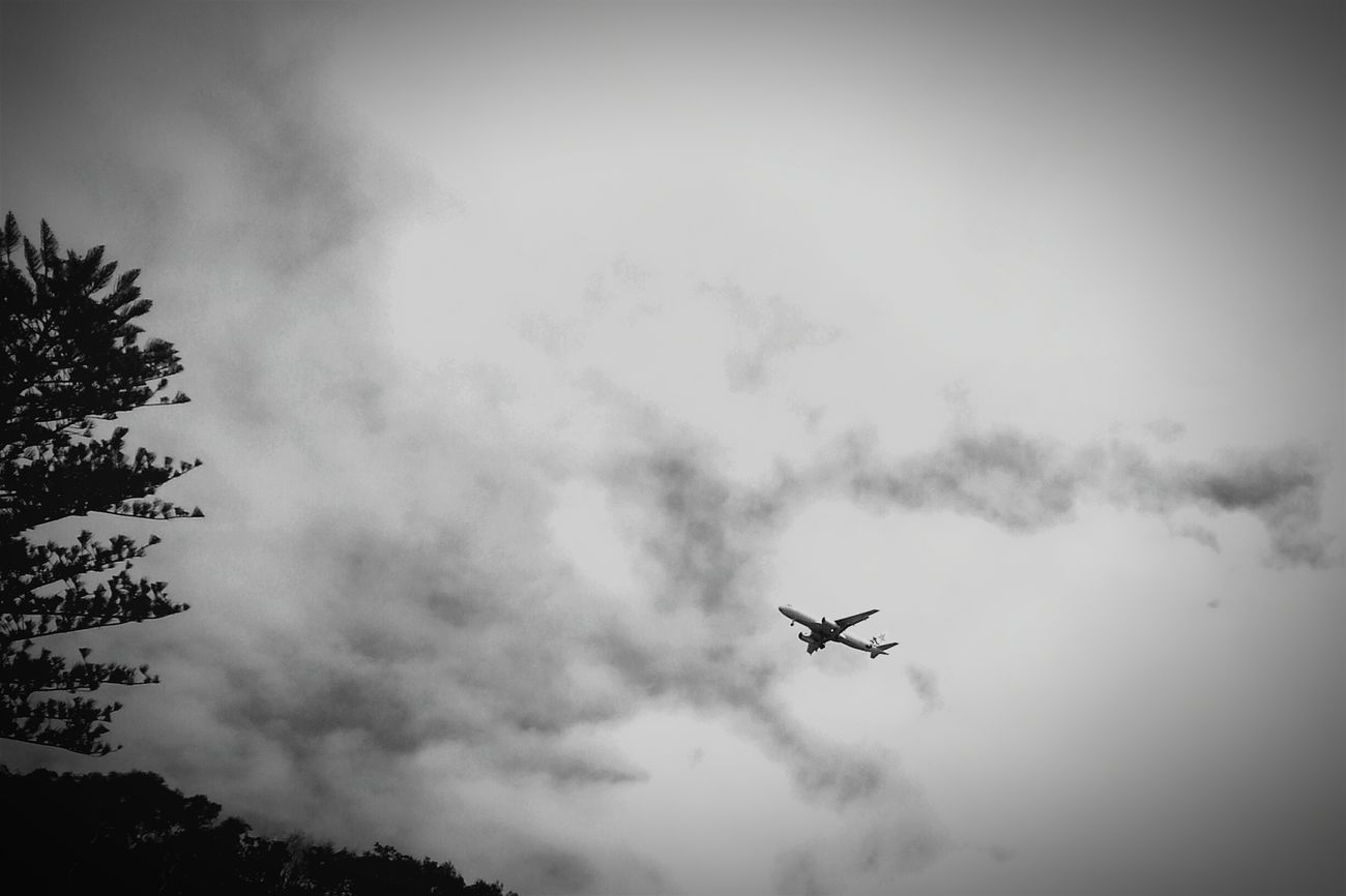 Blackandwhite Photography Plane Gold Coast Australia
