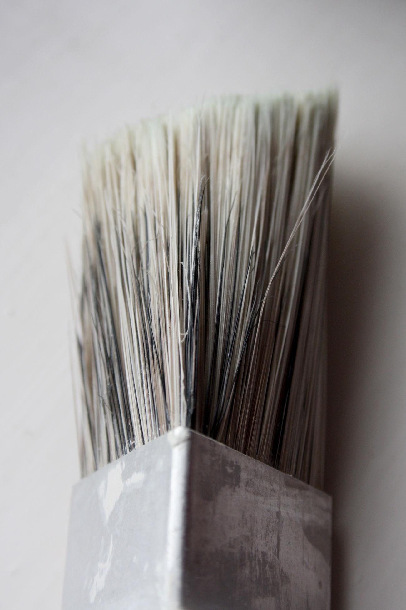 Bristles Brush Close-up Day Decorating Decoration Home Decor Home Decoration  Home Improvement Indoors  No People Paint Brush Paintbrush Painting