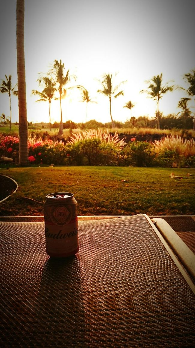 Relaxing Chilling Bigisland Hawai'i Sunset Beer