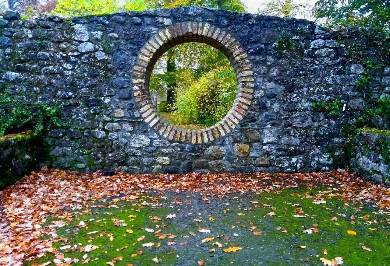 Perspectives On Nature Circle Outdoors Architecture Garden Architecture Garden Photography Circular Hole In The Wall Trees Leaves On The Ground Autumn Autumn Colours No People Beauty In Nature Birr Castle