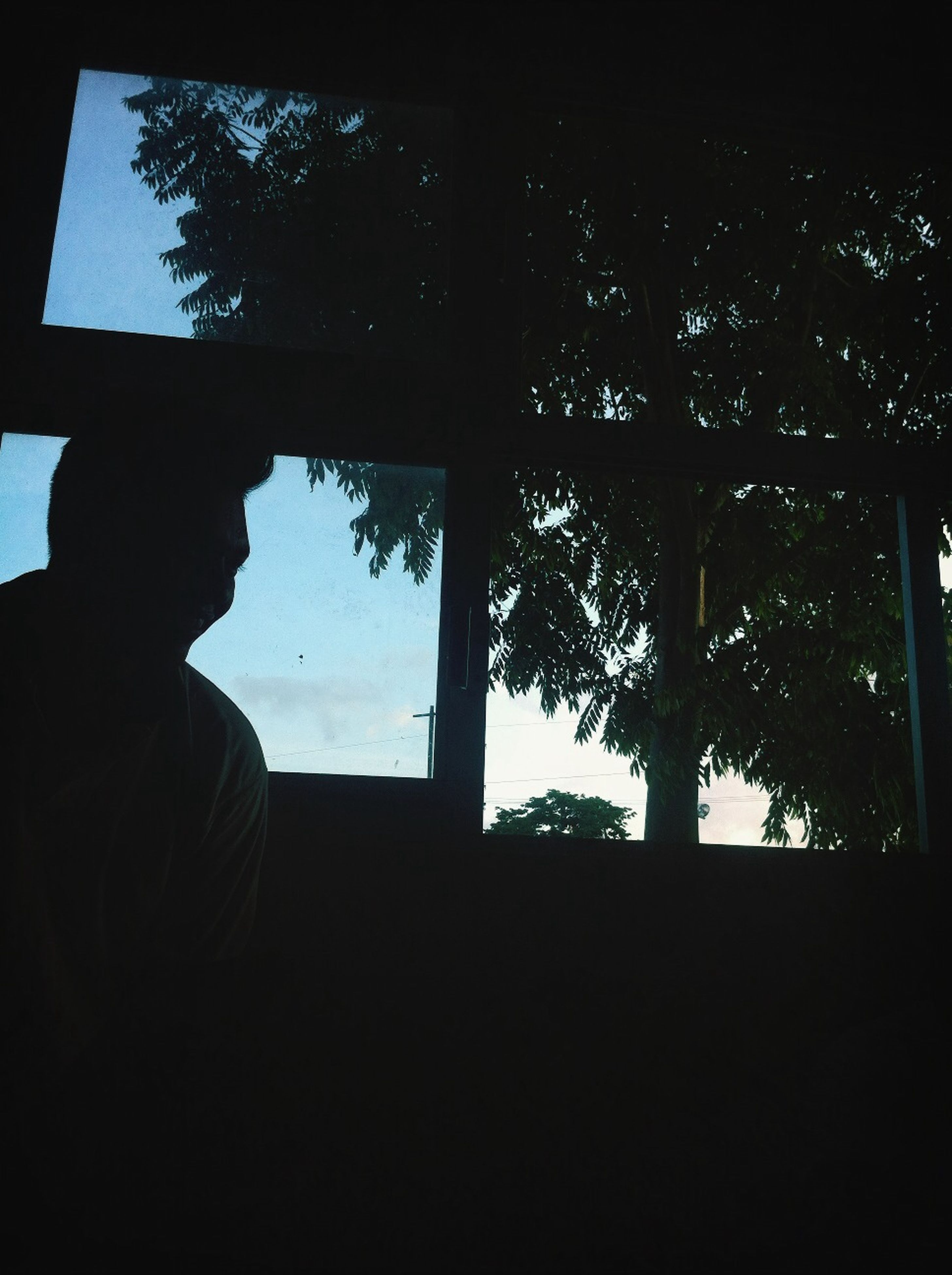 window, indoors, silhouette, tree, glass - material, water, lifestyles, transparent, looking through window, leisure activity, sky, men, sitting, day, sea, nature, standing, reflection